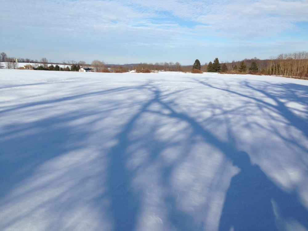 Pennsylvania snowy field 1
