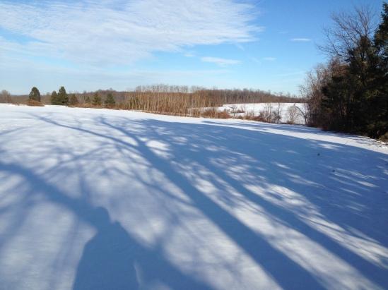 snow pennsylvania field 2