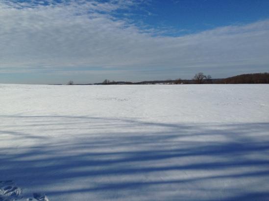 Pennsylvania snowy field 3