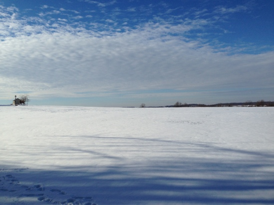 Pennsylvania snowy field 4