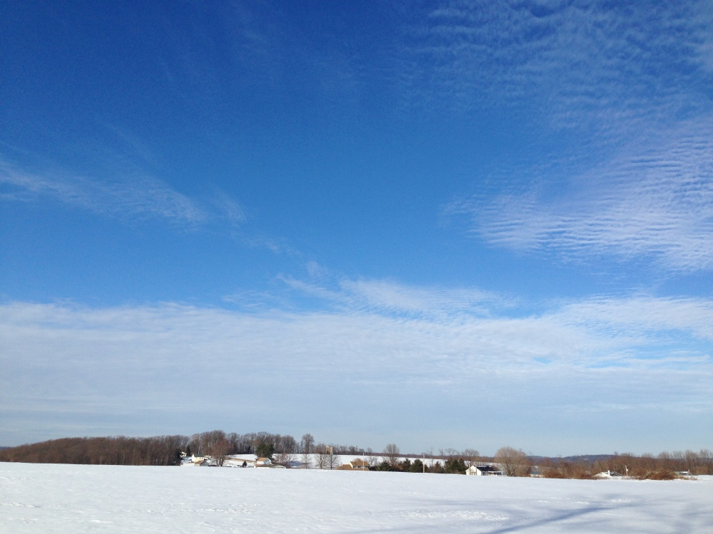 Pennsylvania snowy field 5
