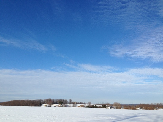 Pennsylvania snowy field 5