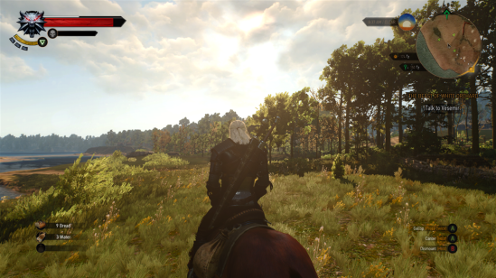 The witcher 3 scenery